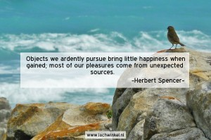 Objects we ardenty pursue bring little happiness